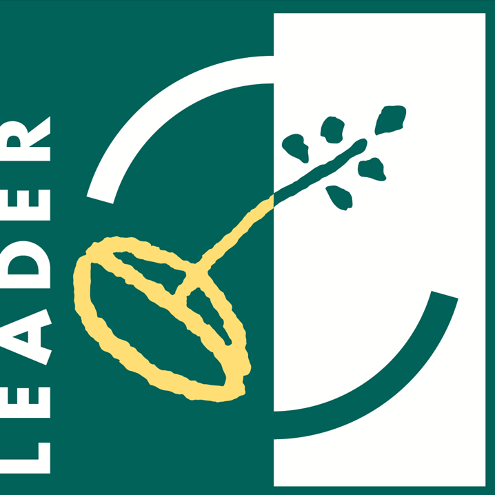 Logo de Leader