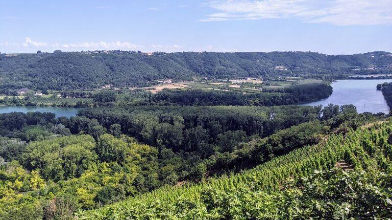 Rando Wine au Domaine Gérard