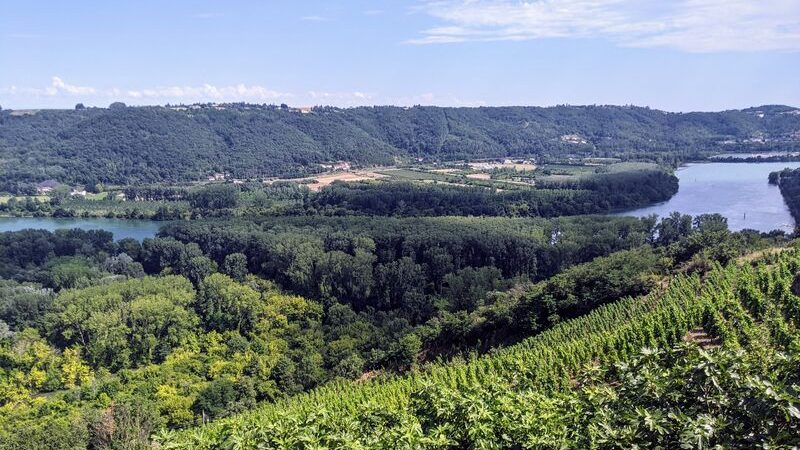 Rando Wine au Domaine Gaillard