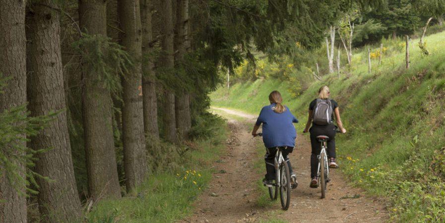 Sorties en vélo et VTT avec les Cyclotouristes Annonéens