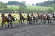 EVE_courses-chevaux