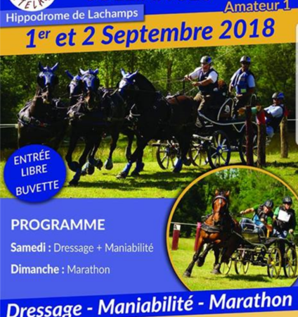 Concours National d'Attelage