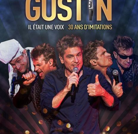 """Spectacle  """"Didier Gustin"""""""