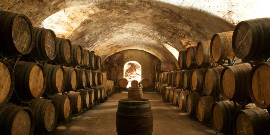 Olympiades du vin au Domaine de Corps de Loup – Fascinant Week-end