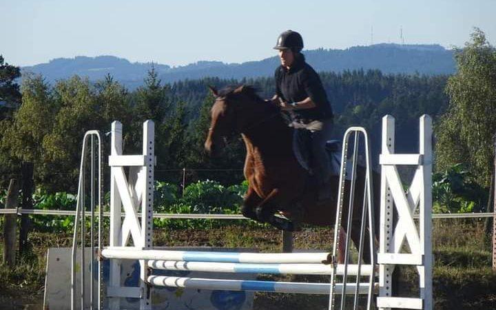 Concours de Sauts d'Obstacles et Hunter à Sembadel
