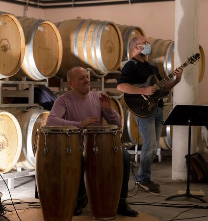 Wine Notes au Domaine Les vins de Vienne